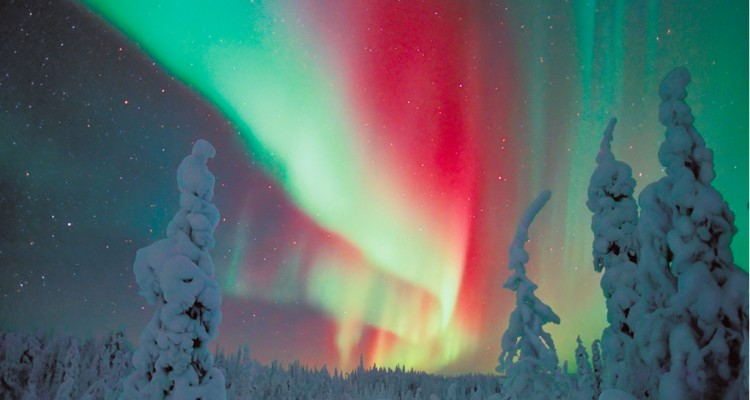 blueberry_aurora_boreale_lapponia_01_box-tSa-750X400